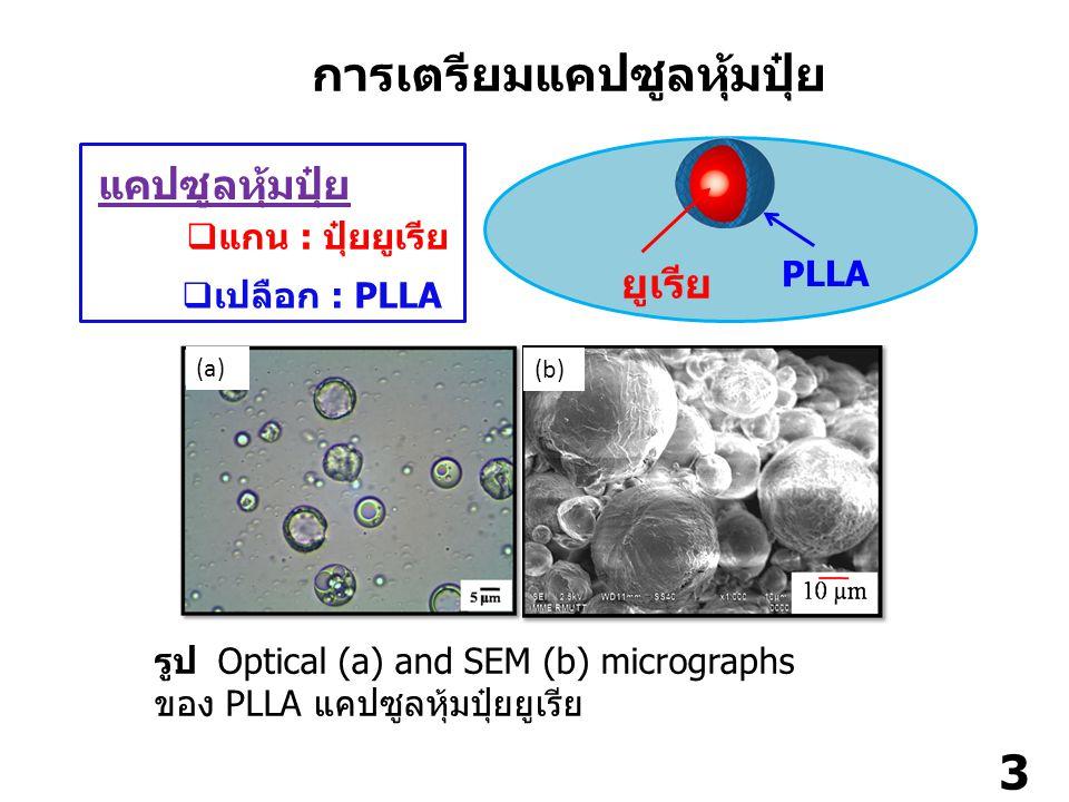 4 รูป ผลการวัดปริมาณยูเรียที่ปลดปล่อยออกมาในน้ำ ( แช่น้ำที่ อุณหภูมิ 25 องศา ) ของแคปซูลที่ใช้ PLLA ที่มีมวลโมเลกุล แตกต่างกันเป็นเปลือก : 3,000 g/mol ( สี่เหลี่ยมแดง ); 30,000 g/mol ( สามเหลี่ยมเขียว ) และ 80,000 ( สี่เหลี่ยมน้ำเงิน ) ยูเรียที่ปลดปล่อยออกมาในชั้นน้ำ 0 20 40 60 80 100 010203040506070 %urea วัน