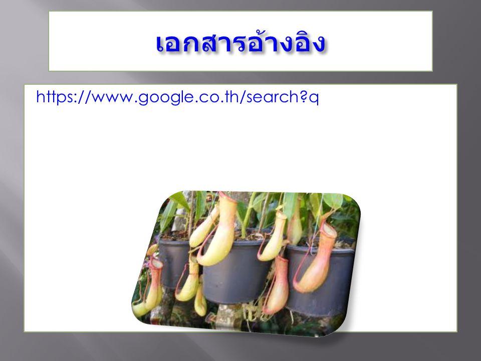 https://www.google.co.th/search?q