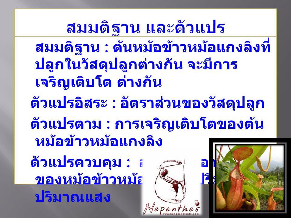 สมมติฐาน : ต้นหม้อข้าวหม้อแกงลิงที่ ปลูกในวัสดุปลูกต่างกัน จะมีการ เจริญเติบโต ต่างกัน ตัวแปรอิสระ : อัตราส่วนของวัสดุปลูก ตัวแปรตาม : การเจริญเติบโตของต้น หม้อข้าวหม้อแกงลิง ตัวแปรควบคุม : สายพันธุ์ อายุ ขนาด ของหม้อข้าวหม้อแกงลิง ปริมาณน้ำ ปริมาณแสง