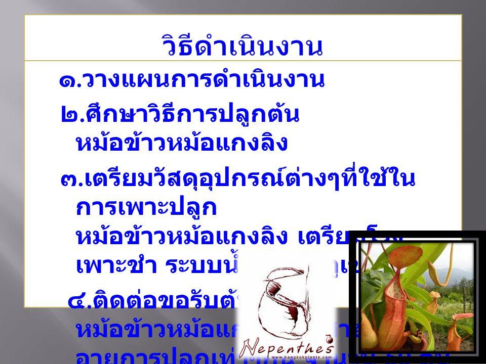 ๑.วางแผนการดำเนินงาน ๒. ศึกษาวิธีการปลูกต้น หม้อข้าวหม้อแกงลิง ๓.