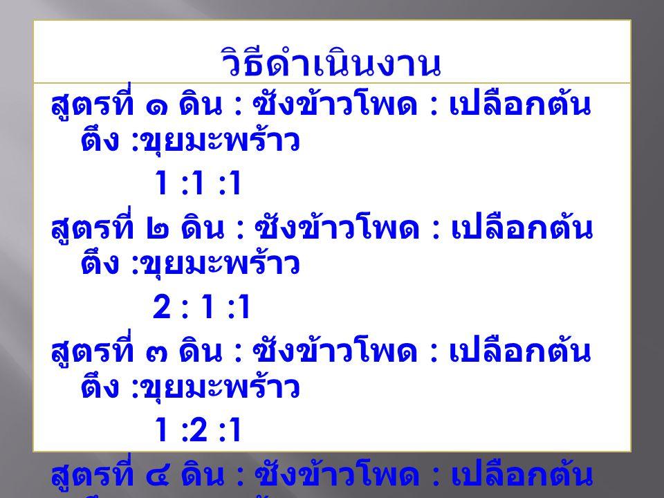 สูตรที่ ๑ ดิน : ซังข้าวโพด : เปลือกต้น ตึง : ขุยมะพร้าว 1 :1 :1 สูตรที่ ๒ ดิน : ซังข้าวโพด : เปลือกต้น ตึง : ขุยมะพร้าว 2 : 1 :1 สูตรที่ ๓ ดิน : ซังข้าวโพด : เปลือกต้น ตึง : ขุยมะพร้าว 1 :2 :1 สูตรที่ ๔ ดิน : ซังข้าวโพด : เปลือกต้น ตึง : ขุยมะพร้าว 1 :1 :2