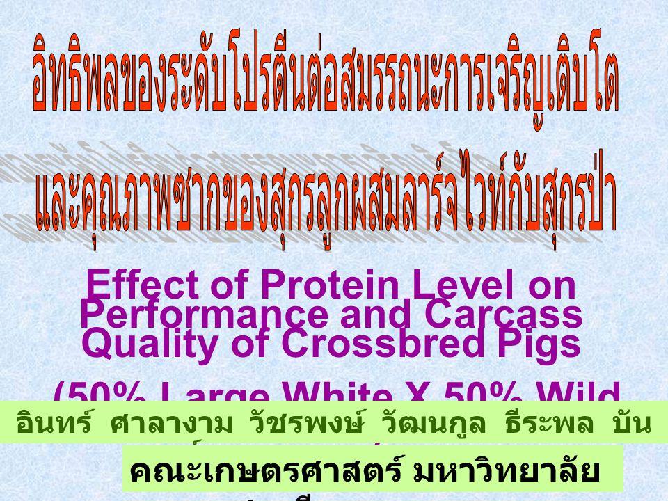 Effect of Protein Level on Performance and Carcass Quality of Crossbred Pigs (50% Large White X 50% Wild Boar) อินทร์ ศาลางาม วัชรพงษ์ วัฒนกูล ธีระพล บัน สิทธิ์ นิภาพรรณ สิงห์ทองลา คณะเกษตรศาสตร์ มหาวิทยาลัย อุบลราชธานี