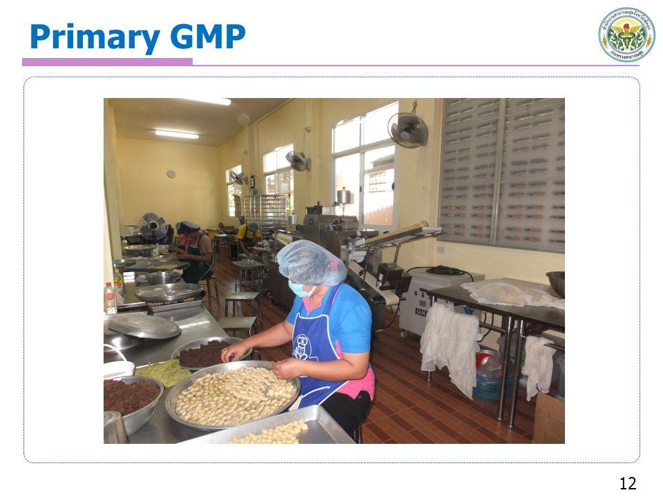 Primary GMP 12