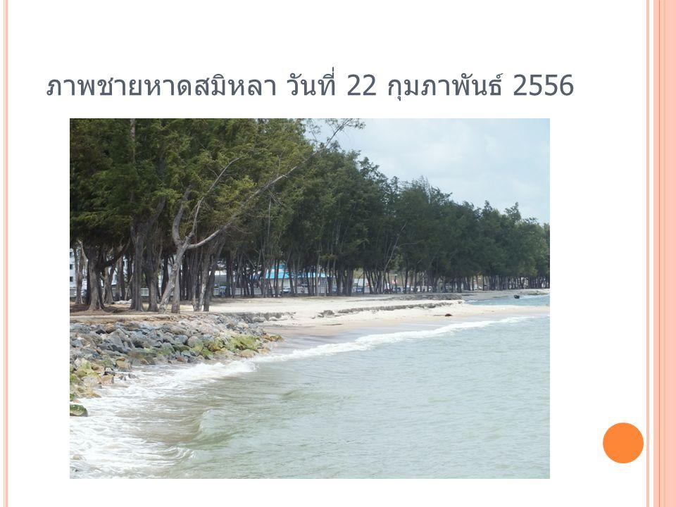 ภาพชายหาดสมิหลา วันที่ 22 กุมภาพันธ์ 2556