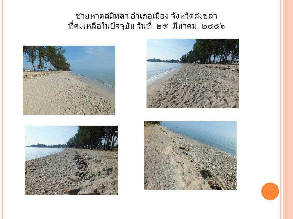 ชายหาดสมิหลา อำเภอเมือง จังหวัดสงขลา ที่คงเหลือในปัจจุบัน วันที่ ๒๕ มีนาคม ๒๕๕๖