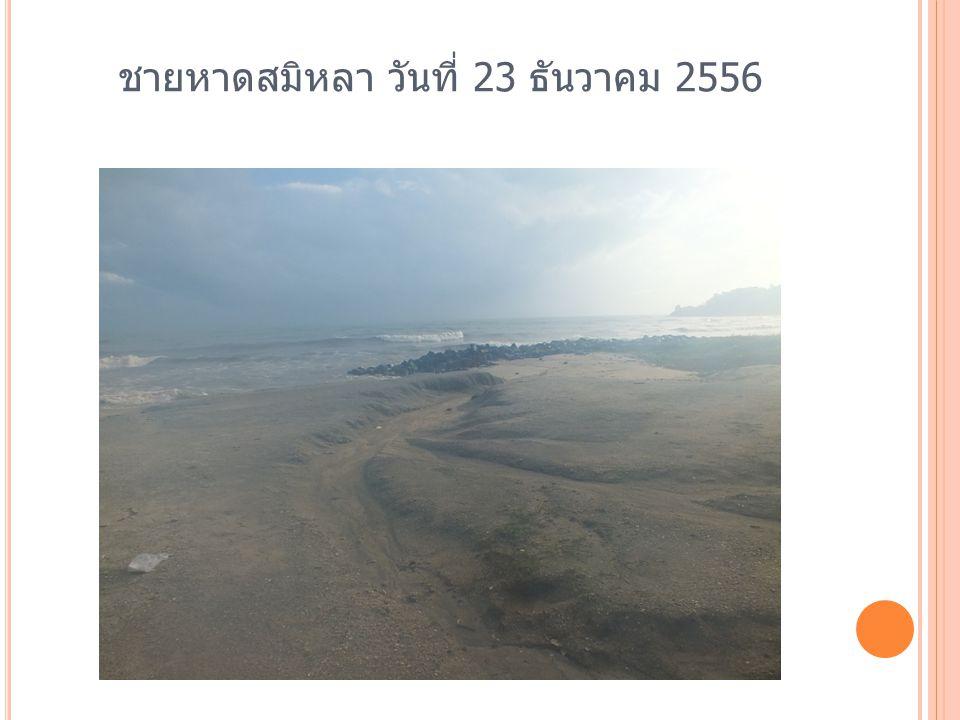 ชายหาดสมิหลา อำเภอเมือง จังหวัด สงขลา ที่คงเหลือในปัจจุบัน วันที่ ๒๕ มีนาคม ๒๕๕๖