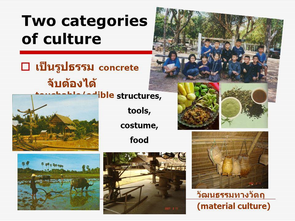 Two categories of culture  เป็นรูปธรรม concrete จับต้องได้ touchable / edible วัฒนธรรมทางวัตถุ (material culture) structures, tools, costume, food