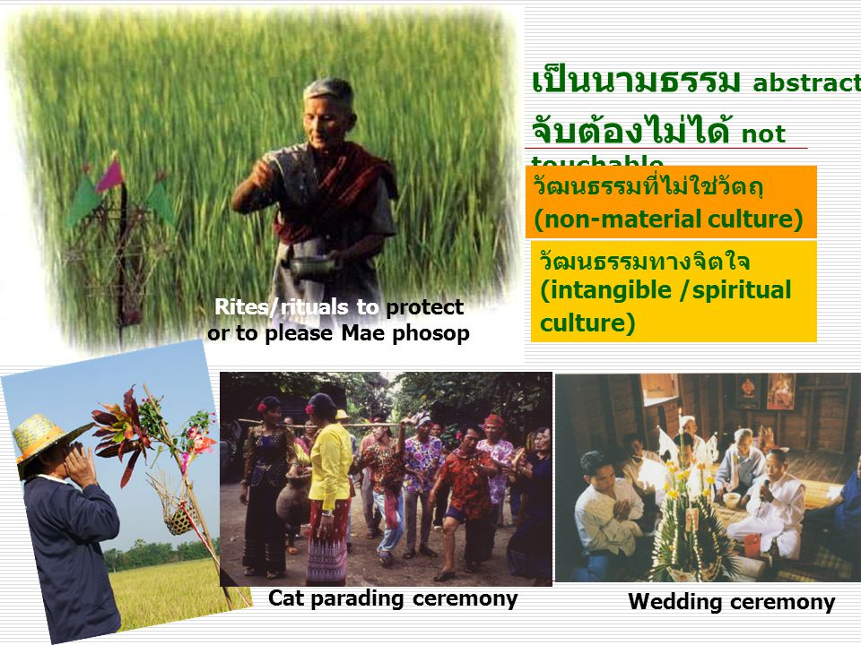  เป็นนามธรรม abstract  จับต้องไม่ได้ not touchable วัฒนธรรมที่ไม่ใช่วัตถุ (non-material culture) วัฒนธรรมทางจิตใจ (intangible /spiritual culture) Rites/rituals to protect or to please Mae phosop Cat parading ceremony Wedding ceremony