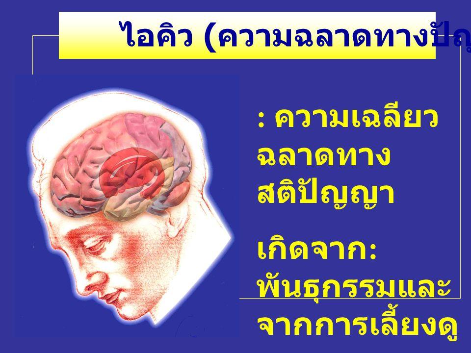 : ความเฉลียว ฉลาดทาง สติปัญญา เกิดจาก : พันธุกรรมและ จากการเลี้ยงดู ไอคิว ( ความฉลาดทางปัญญา )