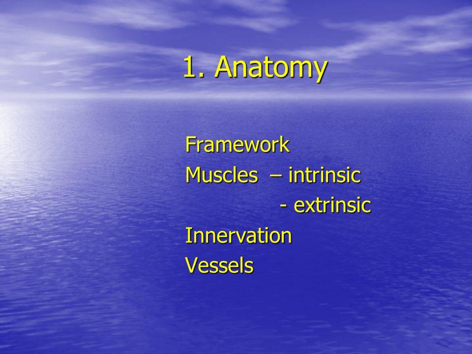 1. Anatomy Framework Muscles – intrinsic - extrinsic - extrinsicInnervationVessels