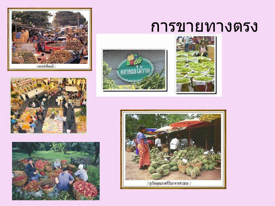 รายการ ตรา สินค้า ลด ราคา ชิม ฟรี แจก สินค้า ตัวอย่ าง ขายยก ถุง / ลัง งาน เทศกาล 1.