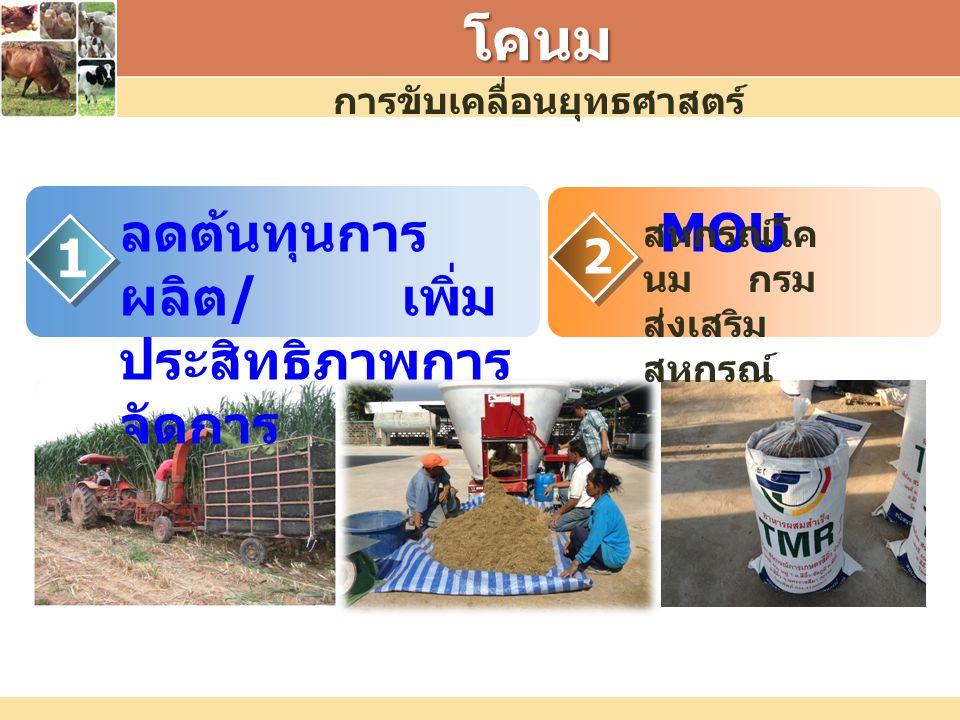 โคนม ลดต้นทุนการ ผลิต / เพิ่ม ประสิทธิภาพการ จัดการ 1 2 MOU สหกรณ์โค นม กรม ส่งเสริม สหกรณ์