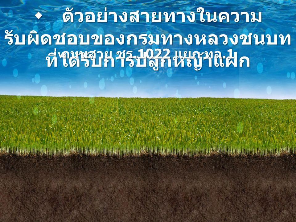  ตัวอย่างสายทางในความ รับผิดชอบของกรมทางหลวงชนบท ที่ได้รับการปลูกหญ้าแฝก ถนนสาย ชร.1022 แยก ทล.1