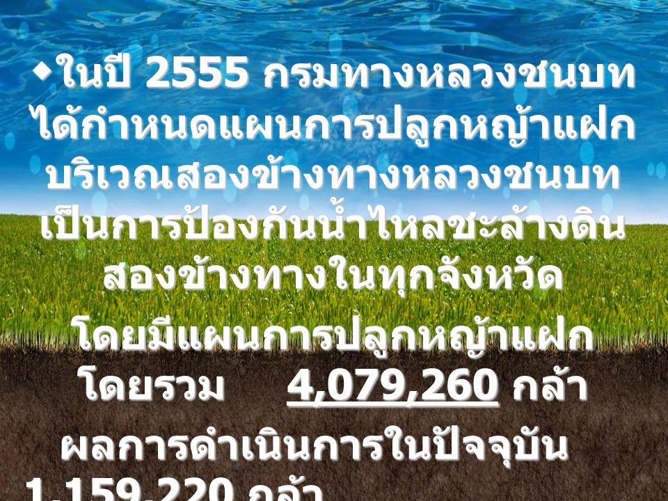 สรุปผลการดำเนินงานพัฒนา และรณรงค์การใช้หญ้าแฝก หน่วยดำเนินงานแผน ( กล้า ) ผลการดำเนินงาน ( กล้า ) หมายเหตุ สำนักทางหลวงชนบทที่ 1 184,100130,000 สำนักทางหลวงชนบทที่ 2 136,00091,000 สำนักทางหลวงชนบทที่ 3 25,0005,000 สำนักทางหลวงชนบทที่ 4 120,00040,000 สำนักทางหลวงชนบทที่ 5 20,000 สำนักทางหลวงชนบทที่ 6 140,00080,000 สำนักทางหลวงชนบทที่ 7 220,0006,000 สำนักทางหลวงชนบทที่ 8 150,000100,000 สำนักทางหลวงชนบทที่ 9 160,00060,000