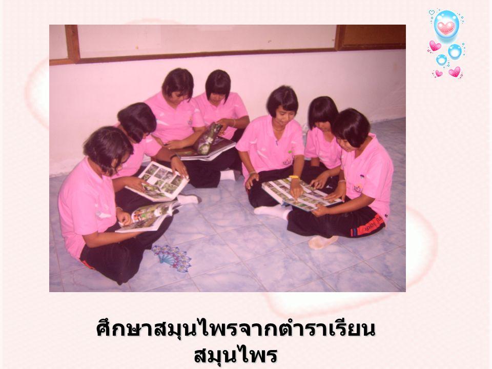 ศึกษาสมุนไพรจากตำราเรียน สมุนไพร