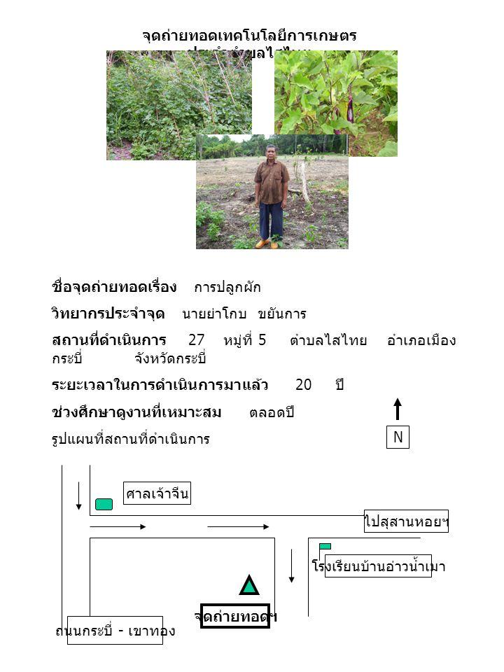 จุดถ่ายทอดเทคโนโลยีการเกษตร ประจำตำบลไสไทย ชื่อจุดถ่ายทอดเรื่อง การเพาะเห็ด วิทยากรประจำจุด นายสัมพันธ์ น่าเยี่ยม สถานที่ดำเนินการ 83 หมู่ที่ 3 ตำบลไสไทย อำเภอ เมืองกระบี่ จังหวัดกระบี่ โทรศัพท์ 081-0838920 ระยะเวลาในการดำเนินการมาแล้ว 23 ปี ช่วงศึกษาดูงานที่เหมาะสม เดือนมกราคม – ธันวาคม รูปแผนที่สถานที่ดำเนินการ N สี่แยกคลองจิหลาด มัสยิดคลองจิหลาด จุดถ่ายทอด ถนนกระบี่ - เขาทอง ตัวเมืองกระบี่
