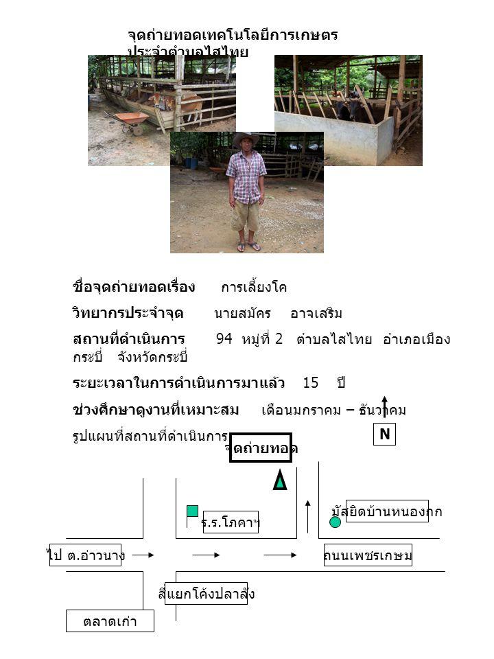 จุดถ่ายทอดเทคโนโลยีการเกษตรประจำตำบลไสไทย ชื่อจุดถ่ายทอดเรื่อง การเรียนรู้พืชสมุนไพร วิทยากรประจำจุด นายวิมล สันติพิทักษ์ สถานที่ดำเนินการ 203 หมู่ที่ 4 ตำบลไสไทย อำเภอ เมืองกระบี่ จังหวัดกระบี่ ระยะเวลาในการดำเนินการมาแล้ว 20 ปี ช่วงศึกษาดูงานที่เหมาะสม เดือนมกราคม – ธันวาคม รูปแผนที่สถานที่ดำเนินการ N ไปสุสานหอย ศาลเจ้าจีน ถนนกระบี่ - เขาทอง สถานีอนามัยบ้านไสไทย จุดถ่ายทอด
