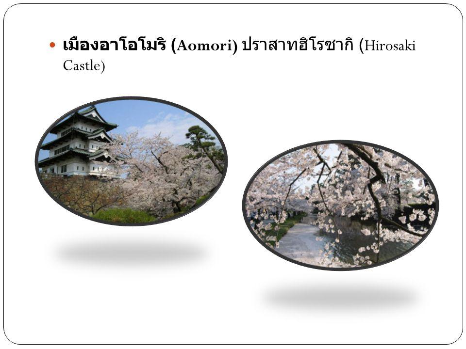 เมืองอาโอโมริ (Aomori) ปราสาทฮิโรซากิ (Hirosaki Castle)