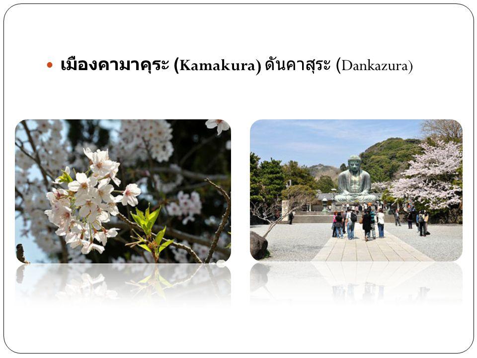 เมืองคามาคุระ (Kamakura) ดันคาสุระ (Dankazura)