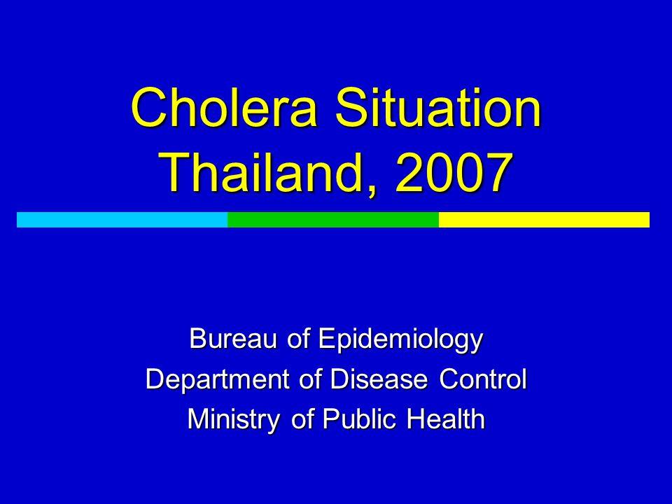 Magnitude of problem (1 Jan - 10 Oct 07)  Total 676 cases (1.08 per 100,000 pop) 23 provinces Passive 362 cases, Community 314 cases Thai 370 cases, Foreigner 296 cases 4 deaths (CFR = 0.6%)