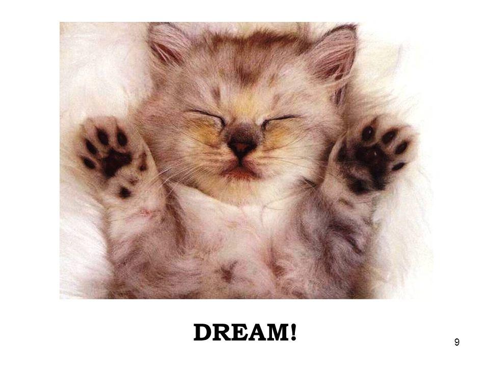 9 DREAM!