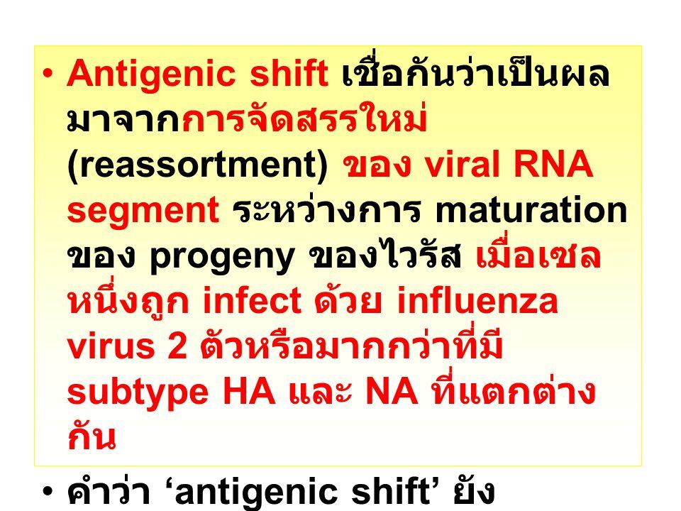 Antigenic shift เชื่อกันว่าเป็นผล มาจากการจัดสรรใหม่ (reassortment) ของ viral RNA segment ระหว่างการ maturation ของ progeny ของไวรัส เมื่อเซล หนึ่งถูก