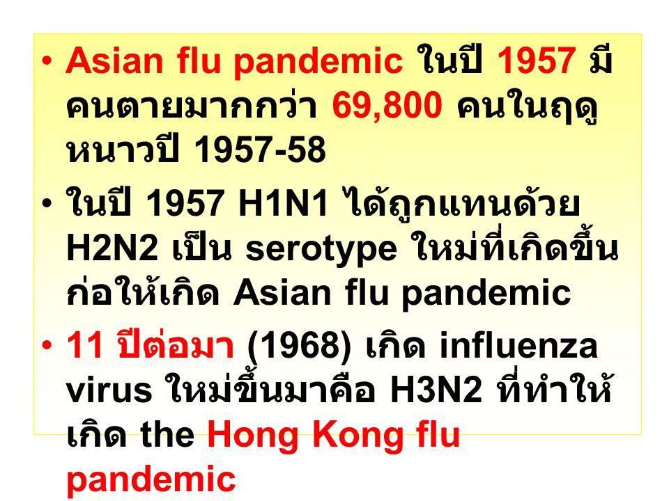 Asian flu pandemic ในปี 1957 มี คนตายมากกว่า 69,800 คนในฤดู หนาวปี 1957-58 ในปี 1957 H1N1 ได้ถูกแทนด้วย H2N2 เป็น serotype ใหม่ที่เกิดขึ้น ก่อให้เกิด