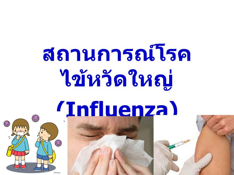 สถานการณ์โรค ไข้หวัดใหญ่ (Influenza)