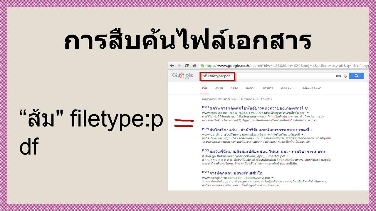 การสืบค้นไฟล์เอกสาร ส้ม filetype:p df