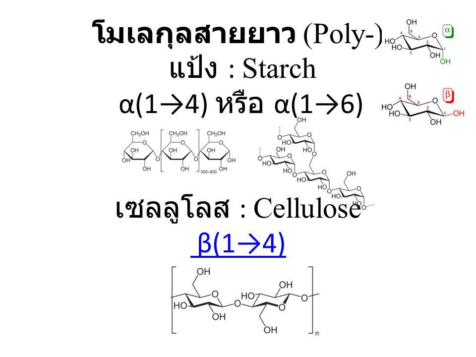 โมเลกุลสายยาว (Poly-) แป้ง : Starch α(1→4) หรือ α(1→6) เซลลูโลส : Cellulose β(1→4) β(1→4)