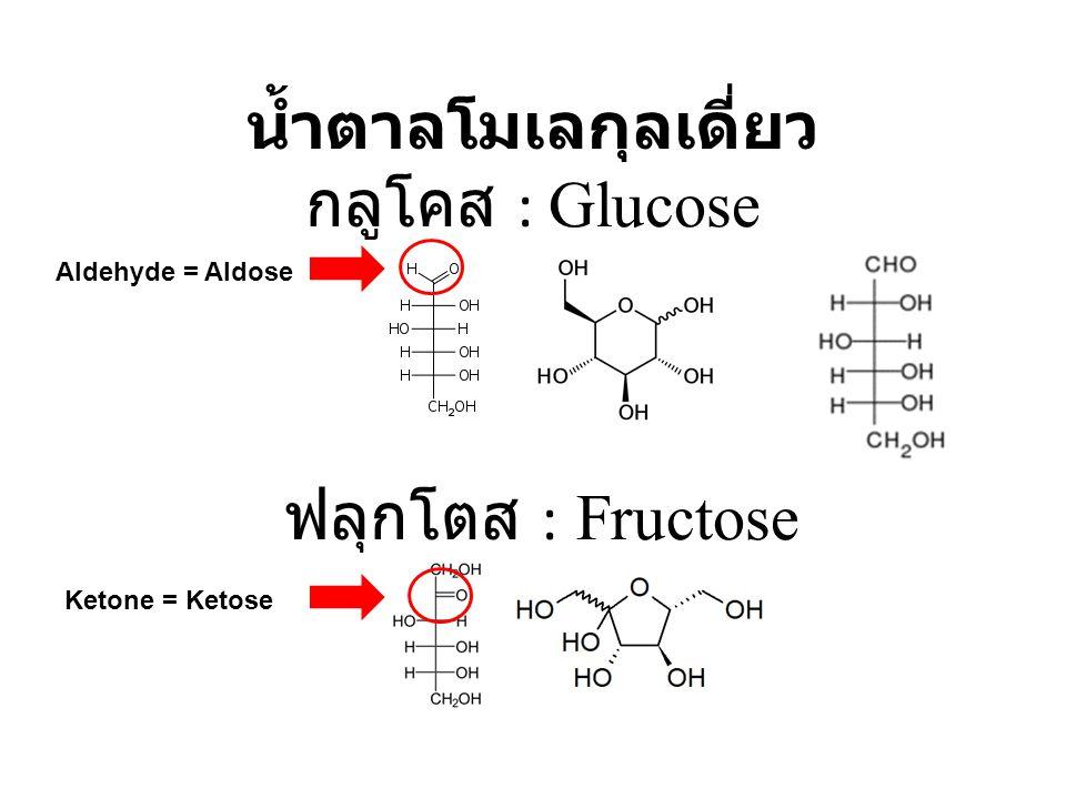น้ำตาลโมเลกุลเดี่ยว กลูโคส : Glucose ฟลุกโตส : Fructose Aldehyde = Aldose Ketone = Ketose