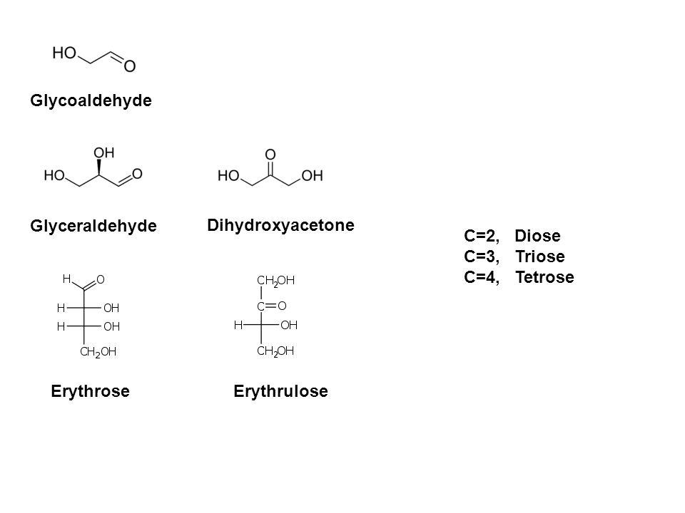 Glycoaldehyde Glyceraldehyde Dihydroxyacetone ErythroseErythrulose C=2, Diose C=3, Triose C=4, Tetrose