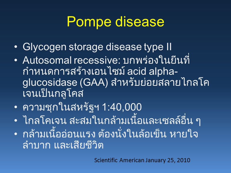 Pompe disease Glycogen storage disease type II Autosomal recessive: บกพร่องในยีนที่ กำหนดการสร้างเอนไซม์ acid alpha- glucosidase (GAA) สำหรับย่อยสลายไกลโค เจนเป็นกลูโคส ความชุกในสหรัฐฯ 1:40,000 ไกลโคเจน สะสมในกล้ามเนื้อและเซลล์อื่น ๆ กล้ามเนื้ออ่อนแรง ต้องนั่งในล้อเข็น หายใจ ลำบาก และเสียชีวิต Scientific American January 25, 2010