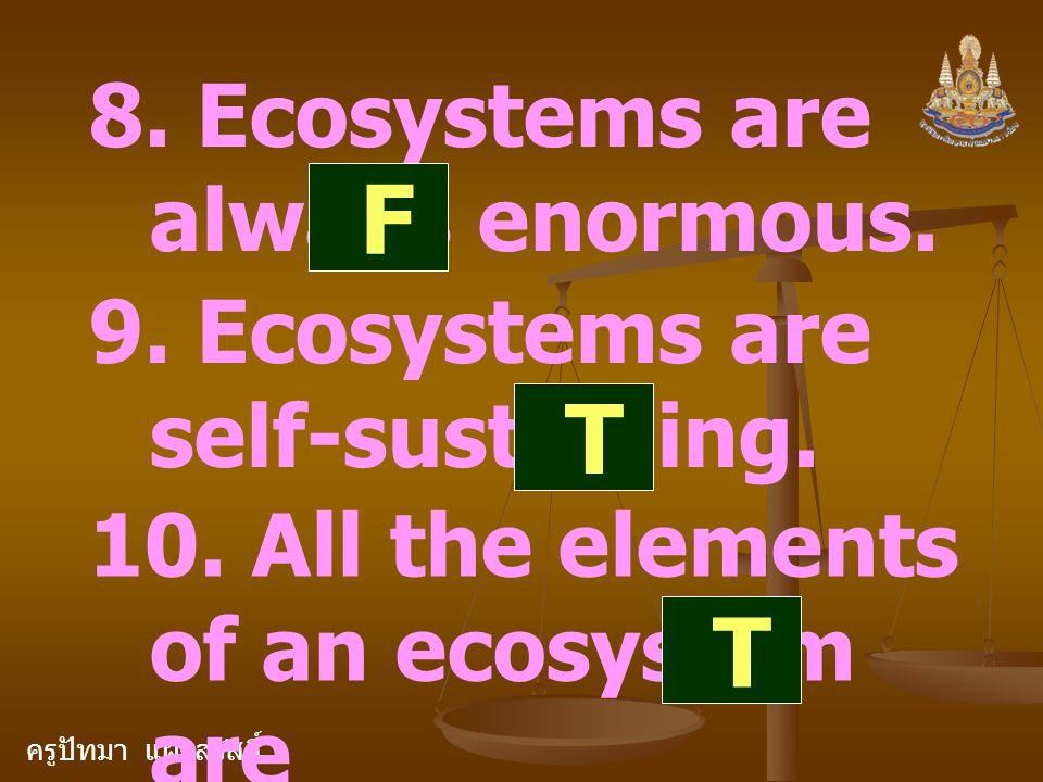 ครูปัทมา แฝงสวัสดิ์ 8. Ecosystems are always enormous. F 9. Ecosystems are self-sustaining. T 10. All the elements of an ecosystem are interdependent.