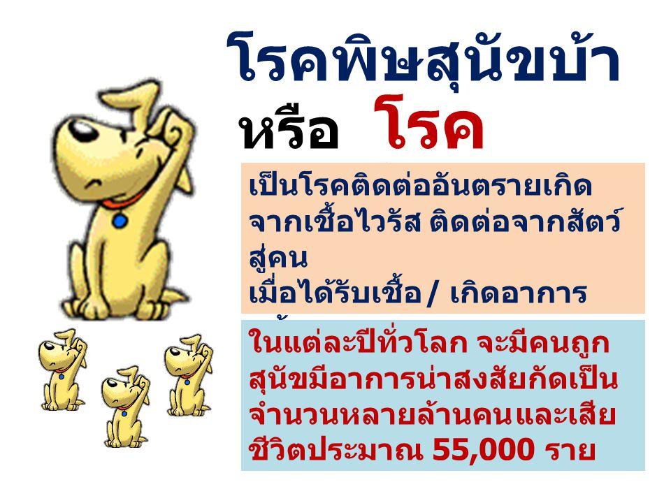 เชื้อโรคพิษสุนัขบ้าเป็นไวรัสชนิดหนึ่ง ติดต่อจากสัตว์สู่คน โดยมีสัตว์เลี้ยง ลูกด้วยนมเป็นตัวกลาง(พาหะนำโรค)