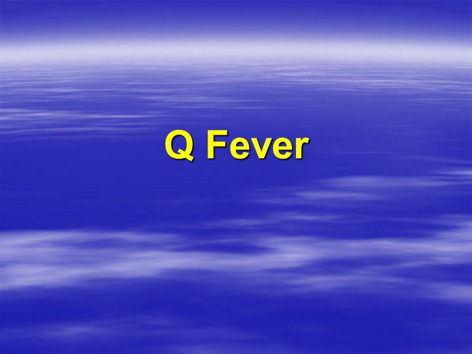 Q Fever