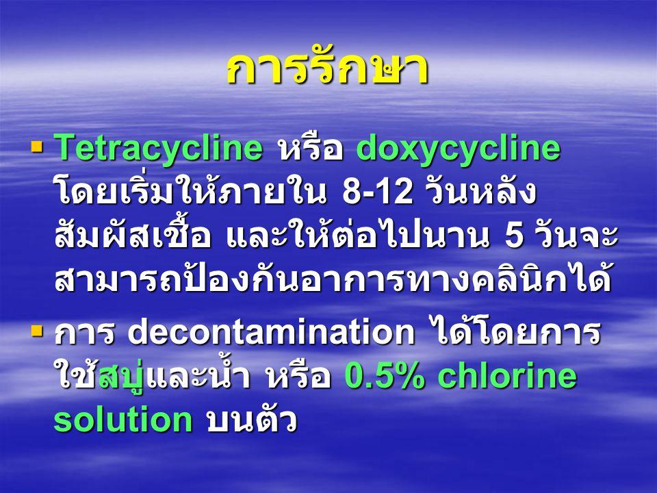 การรักษา  Tetracycline หรือ doxycycline โดยเริ่มให้ภายใน 8-12 วันหลัง สัมผัสเชื้อ และให้ต่อไปนาน 5 วันจะ สามารถป้องกันอาการทางคลินิกได้  การ decontamination ได้โดยการ ใช้สบู่และน้ำ หรือ 0.5% chlorine solution บนตัว