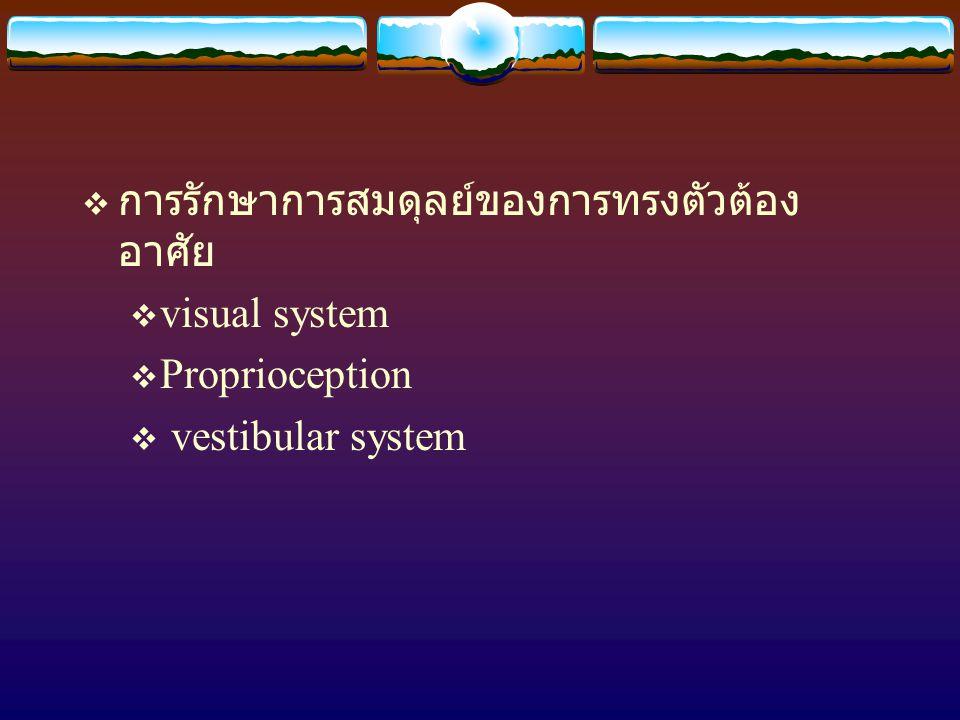  การรักษาการสมดุลย์ของการทรงตัวต้อง อาศัย  visual system  Proprioception  vestibular system