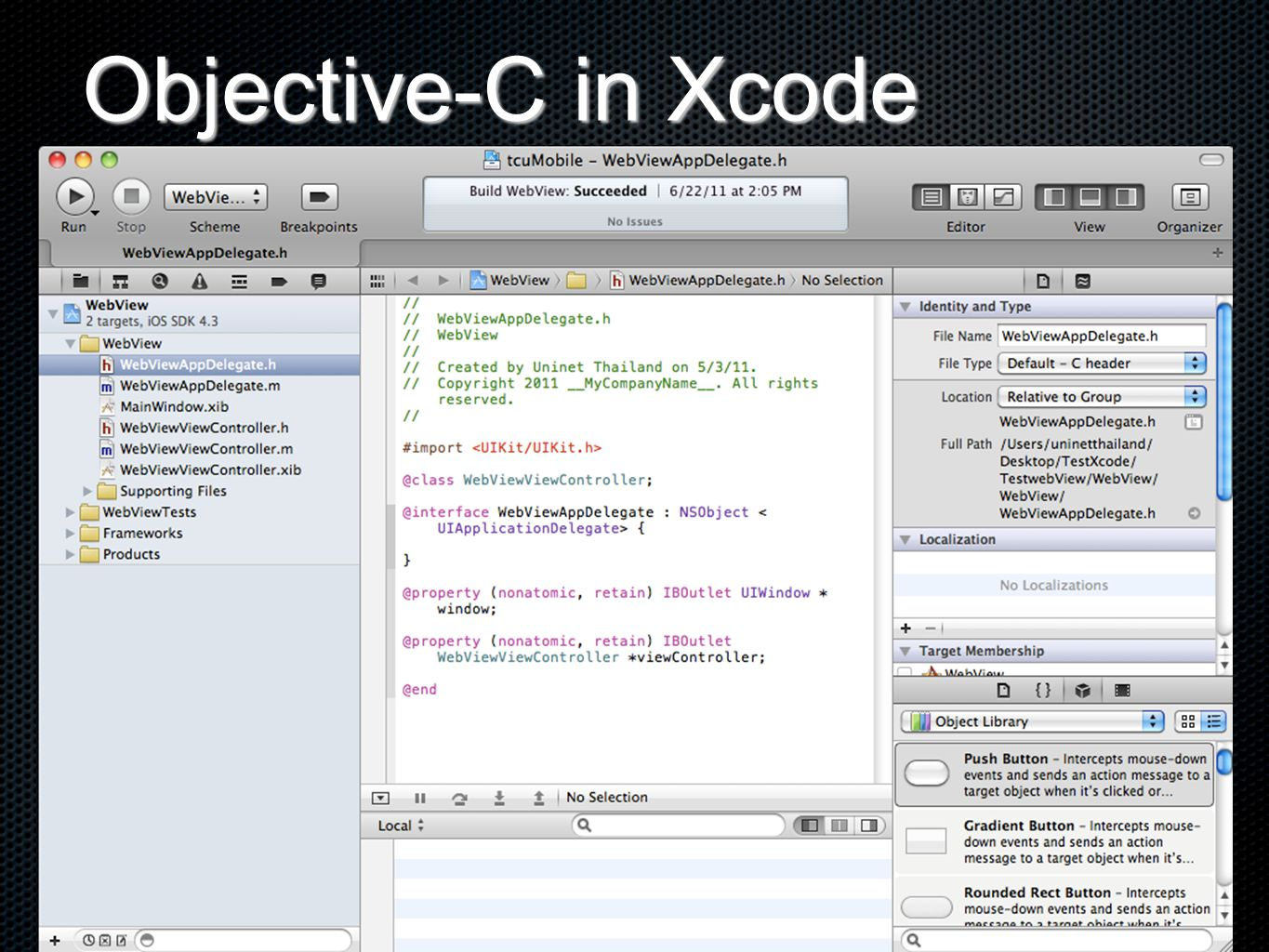 UIWebView Tool in Xcode