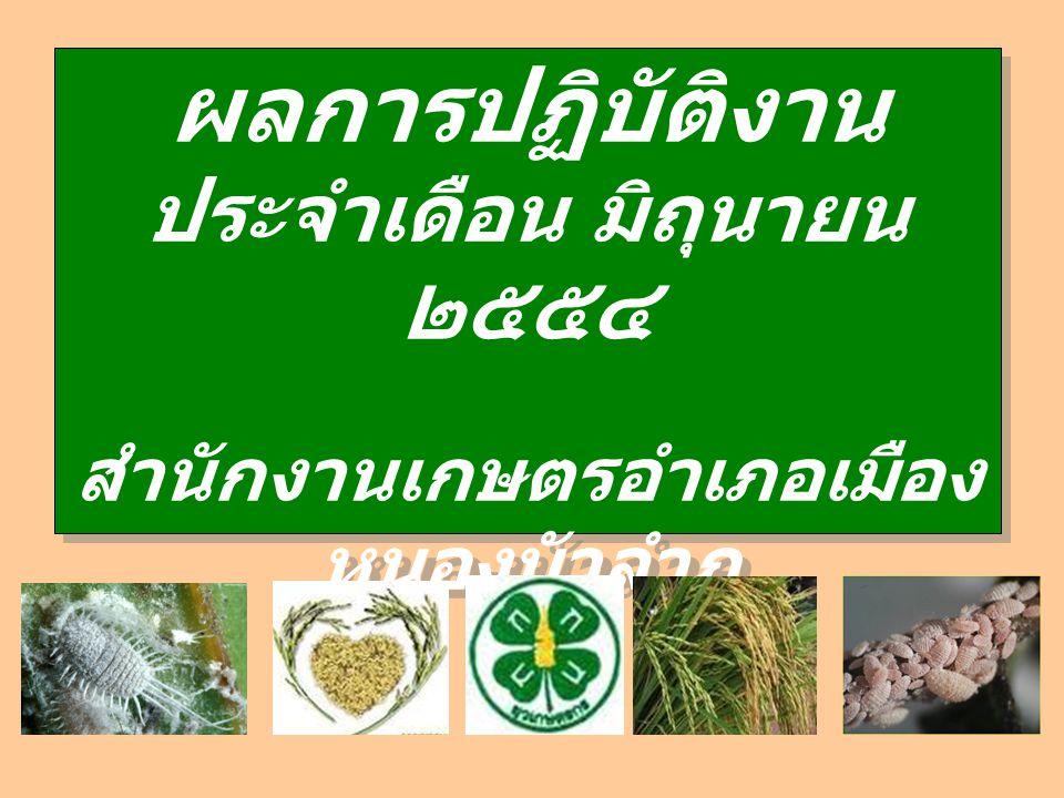 ผลการปฏิบัติงาน ประจำเดือน มิถุนายน ๒๕๕๔ สำนักงานเกษตรอำเภอเมือง หนองบัวลำภู