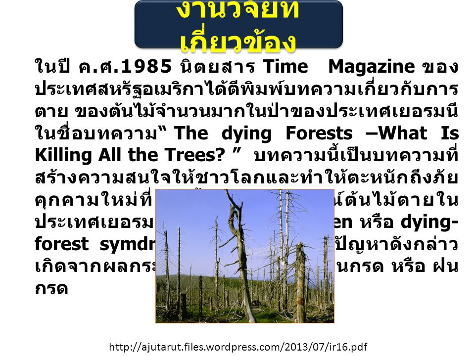 งานวิจัยที่ เกี่ยวข้อง ในปี ค. ศ.1985 นิตยสาร Time Magazine ของ ประเทศสหรัฐอเมริกาได้ตีพิมพ์บทความเกี่ยวกับการ ตาย ของต้นไม้จํานวนมากในป่าของประเทศเยอ