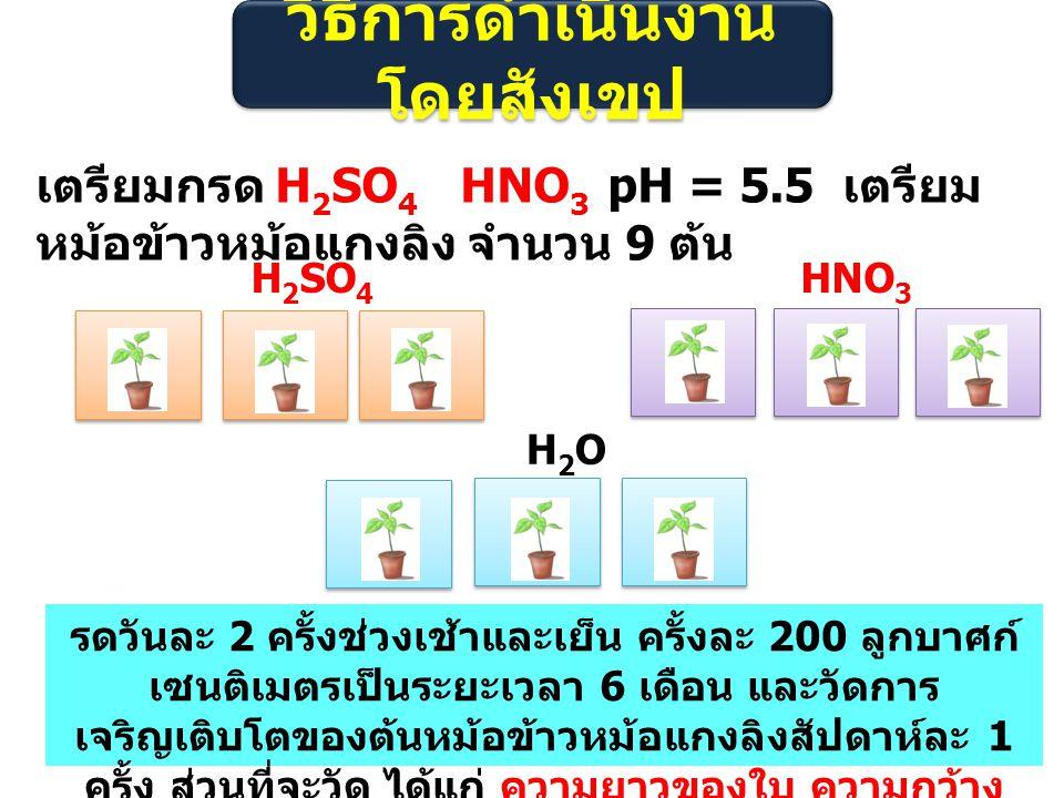 วิธีการดำเนินงาน โดยสังเขป เตรียมกรด H 2 SO 4 HNO 3 pH = 5.5 เตรียม หม้อข้าวหม้อแกงลิง จำนวน 9 ต้น H 2 SO 4 HNO 3 H2OH2O รดวันละ 2 ครั้งช่วงเช้าและเย็