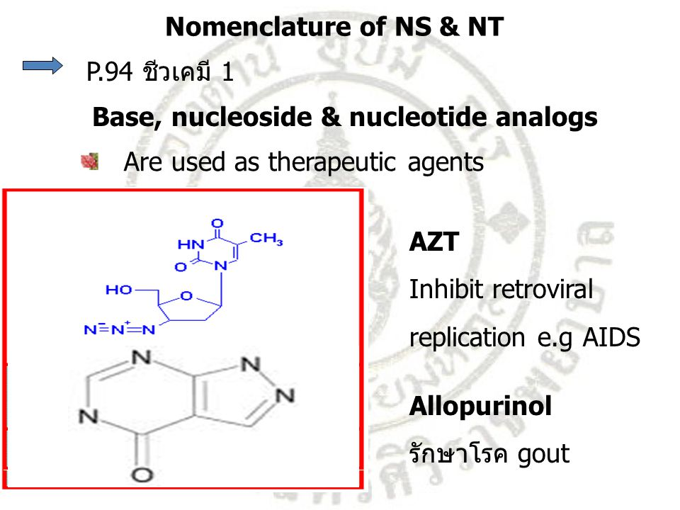 P.94 ชีวเคมี 1 Are used as therapeutic agents Allopurinol รักษาโรค gout AZT Inhibit retroviral replication e.g AIDS Nomenclature of NS & NT Base, nucl