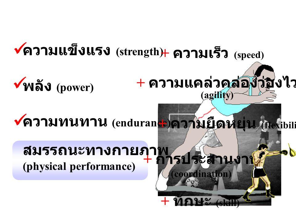 ความแข็งแรง (strength) พลัง (power) ความทนทาน (endurance) สมรรถนะทางกายภาพ (physical performance) + ความเร็ว (speed) + ความแคล่วคล่องว่องไว (agility)