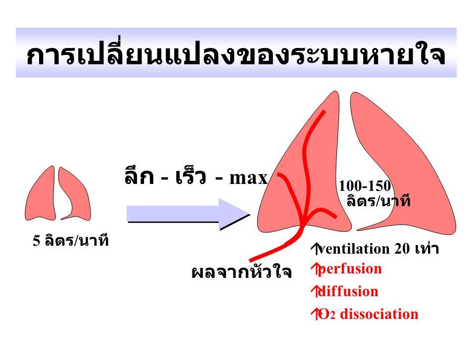 การเปลี่ยนแปลงของระบบหายใจ 5 ลิตร / นาที 100-150 ลิตร / นาที  ventilation 20 เท่า  perfusion  diffusion  O 2 dissociation ลึก - เร็ว - max ผลจากหั
