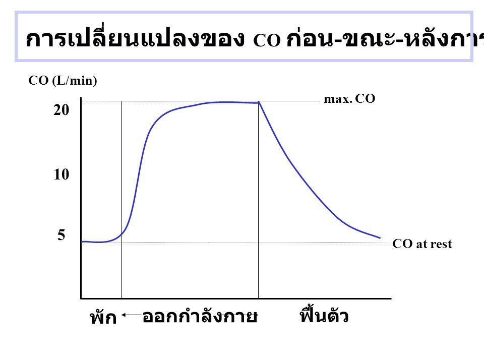 การเปลี่ยนแปลงของ CO ก่อน - ขณะ - หลังการออกกำลังกาย CO (L/min) 5 10 20 พัก ฟื้นตัว CO at rest max. CO ออกกำลังกาย