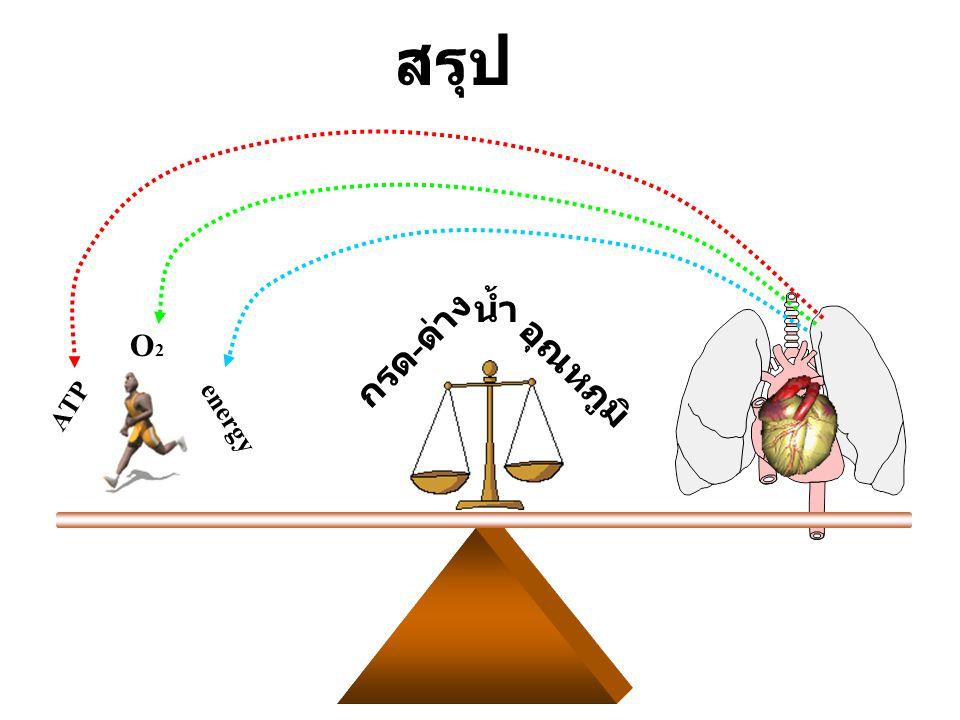 ATP O2O2 energy อุณหภูมิ กรด - ด่าง น้ำ สรุป