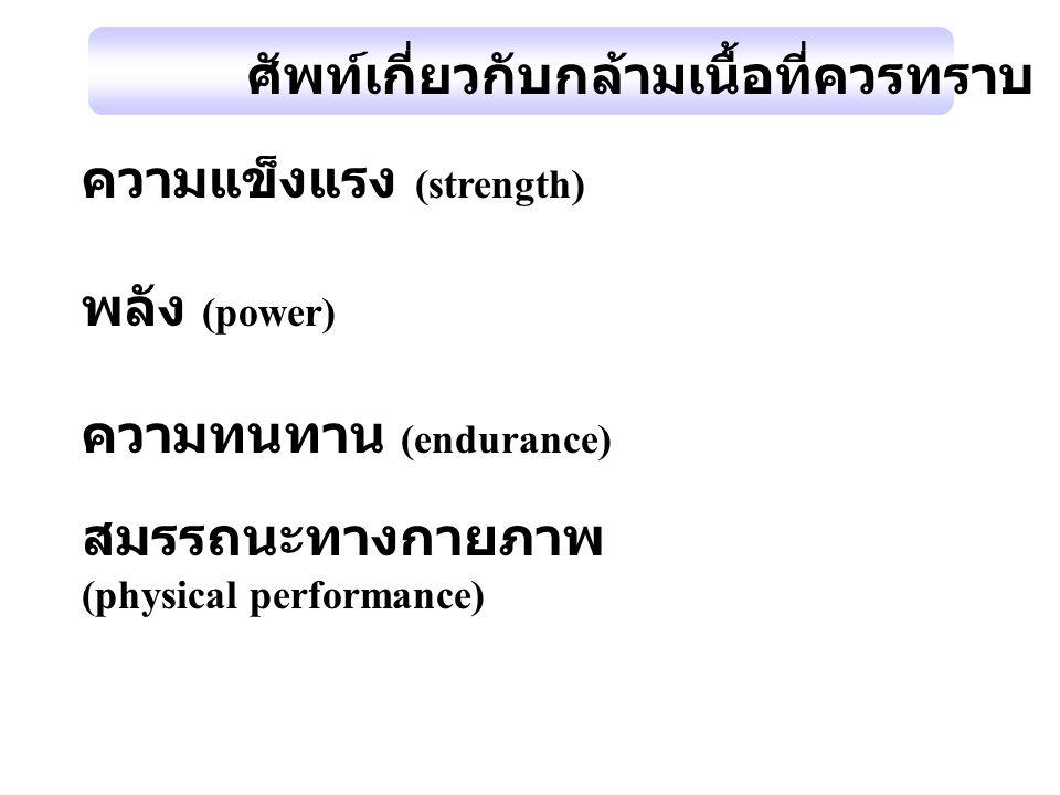ความแข็งแรง (strength) พลัง (power) ความทนทาน (endurance) สมรรถนะทางกายภาพ (physical performance) ศัพท์เกี่ยวกับกล้ามเนื้อที่ควรทราบ