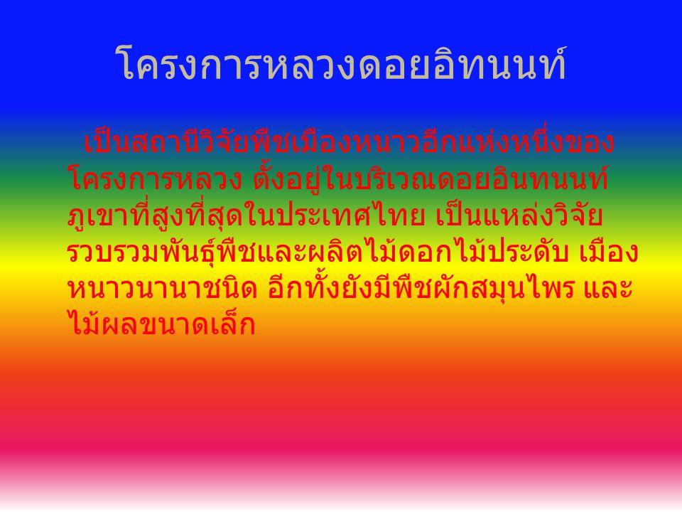 โครงการหลวงดอยอิทนนท์ เป็นสถานีวิจัยพืชเมืองหนาวอีกแห่งหนึ่งของ โครงการหลวง ตั้งอยู่ในบริเวณดอยอินทนนท์ ภูเขาที่สูงที่สุดในประเทศไทย เป็นแหล่งวิจัย รวบรวมพันธุ์พืชและผลิตไม้ดอกไม้ประดับ เมือง หนาวนานาชนิด อีกทั้งยังมีพืชผักสมุนไพร และ ไม้ผลขนาดเล็ก