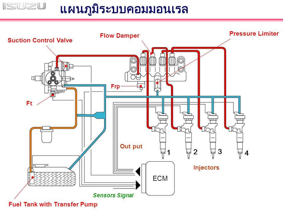 ECM Sensors Signal Injectors Pressure Limiter Flow Damper Suction Control Valve Fuel Tank with Transfer Pump แผนภูมิระบบคอมมอนเรล Out put 1 2 3 4 Frp